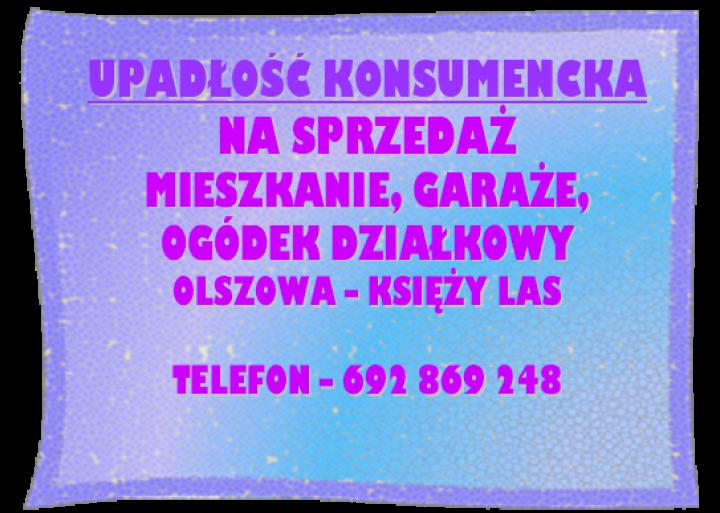Obraz1-8.png