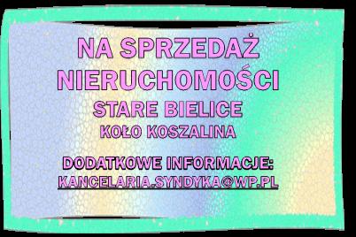 Obraz2-2.png