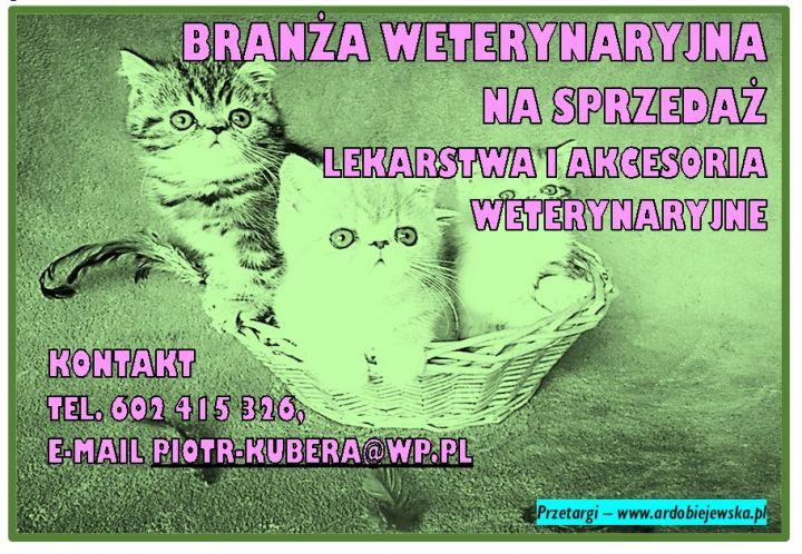 branza-weterynaryjna-syndyk-sprzeda-lekarstwa-ardobiejewska-syndyk-sprzeda-akcesoria-weterynaryjne.jpg