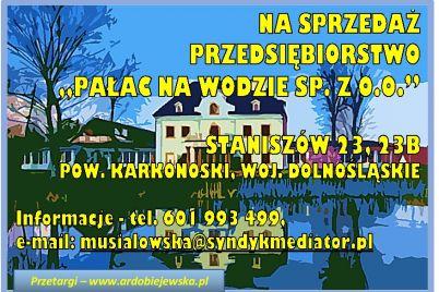 ef-87-syndyk-przeda-pałac-na-wodzie-ardobiejewska.pl-syndyk-sprzeda-przedsiebiorstwo.jpg