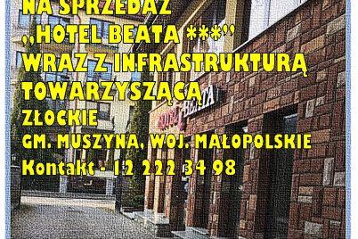 ef-88-syndyk-sprzeda-hotel-ardobiejewska-hotel-beata-na-sprzedaz.jpg