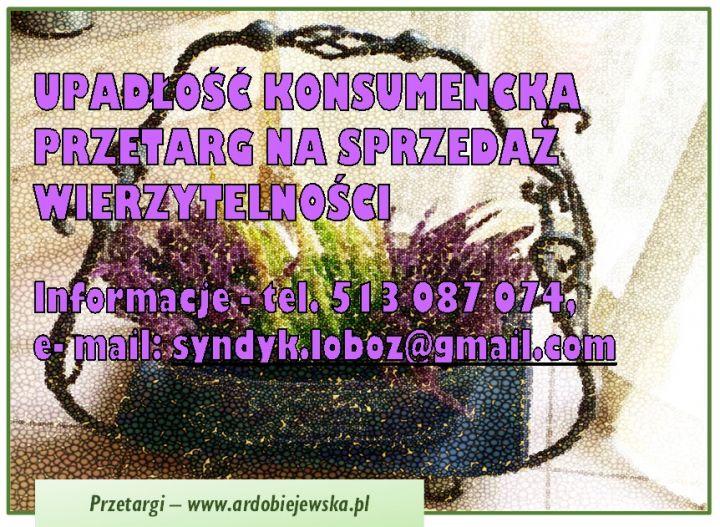 ef-97-syndyk-sprzeda-wierzytelność-ardobiejewska.pl-syn-dyk-oglasza-przetarg-upadlosc-konsumencka.jpg