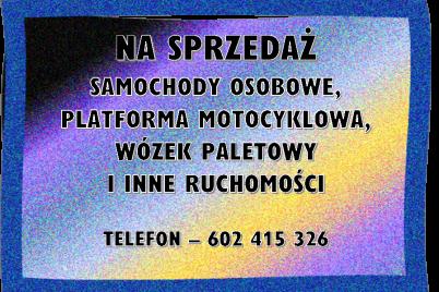 ef-renoma-31-obraz-2.png