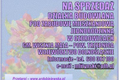 na-sprzedazdzialka-budowlana-w-ozorowicach-ardobiejewska.pl-gmina-wisznia-mala.jpg