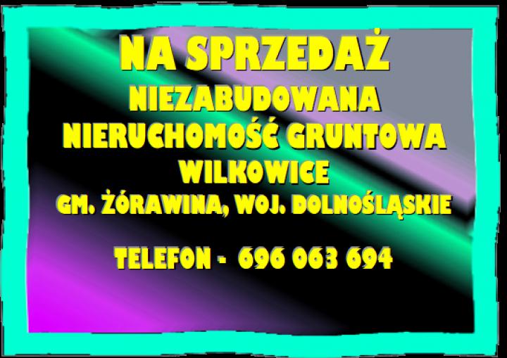 obraz-2-1.png