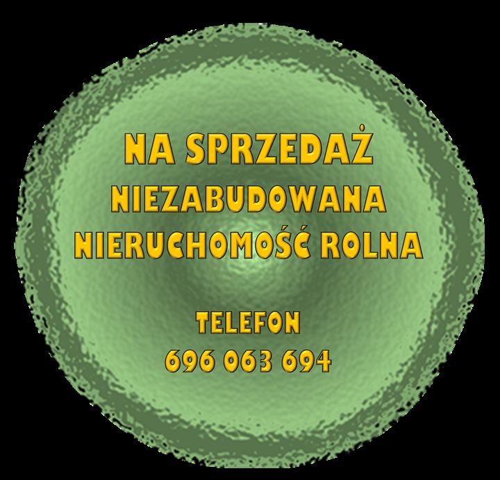 obraz-2-11.png