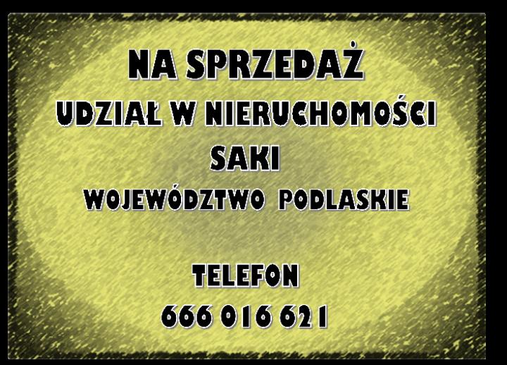 obraz-2-13.png
