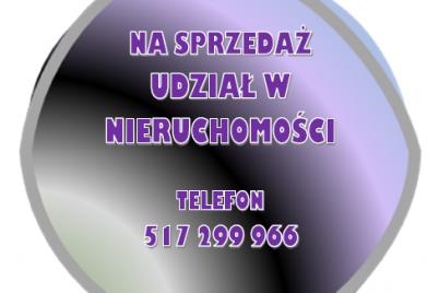 obraz-2-2.png