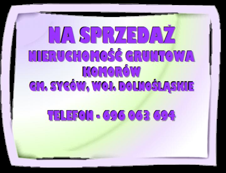 obraz-2-3.png
