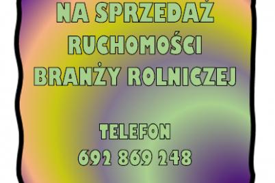 obraz-2-4.png