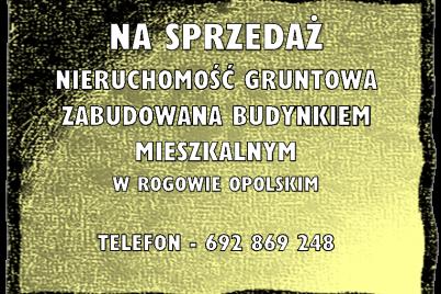 obraz-2-5.png