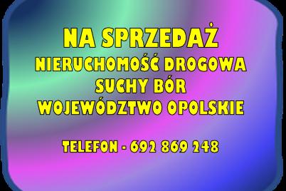 obraz-2-6.png