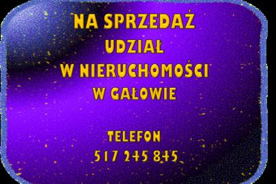 obraz-3-3.png