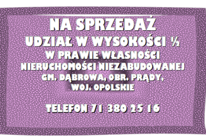 obraz-6-8.png