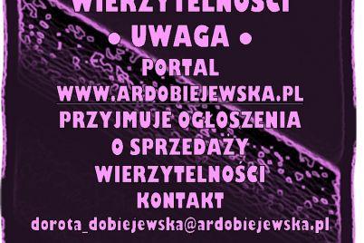 syndyk-sprzeda-ardobiejewska.pl-upadlosc-konsumencka-syndyk-ogłasza-przetarg-komunikaty-ogloszenia-przetargi-z-wolnej-reki-ruchomosci-nieruchomosci-wroclaw-syndyk-sprzeda-wierzytelnosci.jpg