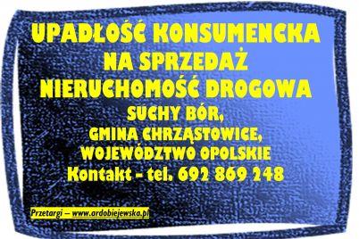 syndyk-sprzeda-nieruchomosc-drogowa-ardobiejewska.pl-syndyk-suchy-dwor-syndyk-woj.-opolskie-syndyk-oglasza-przetarg.jpg
