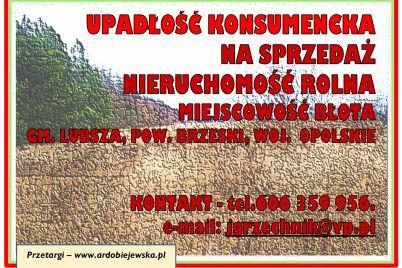 syndyk-sprzeda-nieruchomosc-rolna-ardobiejewska.pl-upadlosc-konsumencka-syndyk-oglasza-portale-dla-syndykow-portal-syndykow-syndyk-dzialka-rolna.jpg
