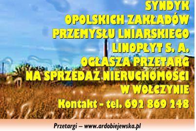 syndyk-sprzeda-nieruchomosci-ardobiejewska.pl-w-wolczynie-woj.-opolskie-syndyk-przetargi-syndyk-oglasza-przetarg-syndyk-komunikaty.jpg
