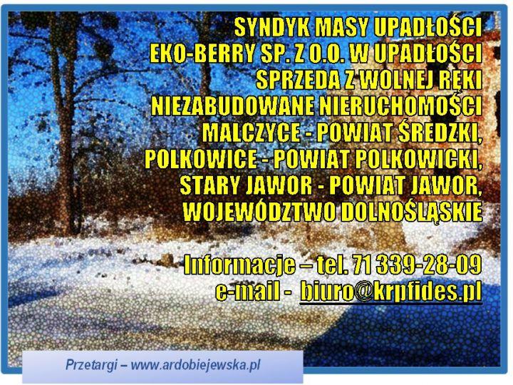 syndyk-sprzeda-nieruchomosci-niezabudowane-ardobiejewska.pl-malczyce-polkowice-stary-jawor.jpg