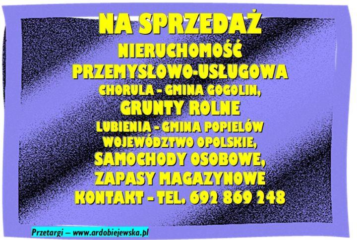 syndyk-sprzeda-nieruchosci-ardobiejewska.pl-syndyk-woj.-opolskie-syndyk-sprzeda-grunty-rolne-w-lubieni-syndyk-sprzeda-samochody-syndyk-ruchomosci.jpg