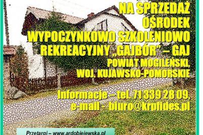 syndyk-sprzeda-osrodek-wypoczynkowy-ardobiejewska.pl-gajk-powiat-mogilno-woj.-kujawsko-pomorskie.jpg