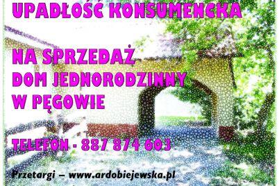 syndyk-sprzeda-syndyk-ogłasza-ardobiejewska.pl-komunikaty-ogloszenia-przetargi-z-wolnej-reki-ruchomosci-nieruchomosci-wierzytelnosci-na-sprzedaz-dom-w-pegowie.jpg