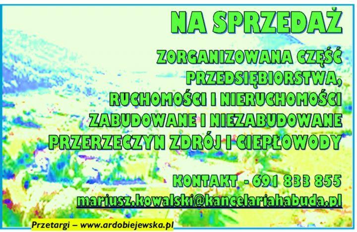 syndyk-sprzeda-syndyk-ogłasza-ardobiejewska.pl-komunikaty-ogloszenia-przetargi-z-wolnej-reki-ruchomosci-nieruchomosci-wierzytelnosci-na-sprzedaz-uzdrowisko.jpg