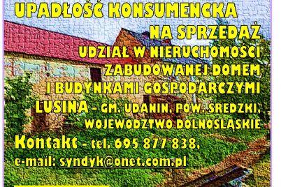 syndyk-sprzeda-udział-w-nieruchomosci-ardobiejewska.pl-syndyk-upadlosc-konsumencka-syndyk-wroclaw-syndyk-komunikaty.jpg