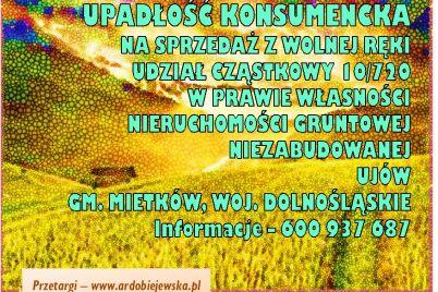 syndyk-sprzeda-udział-w-nieruchomosci-ardobiejewska.pl-ujow-gmina-mietkow.jpg