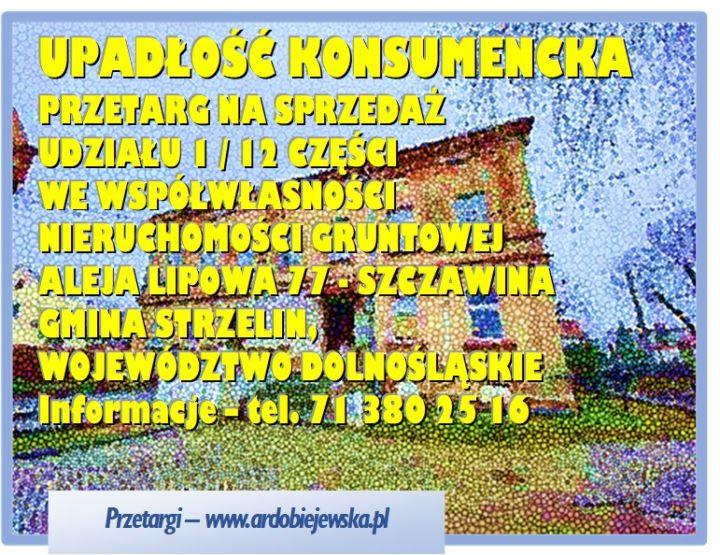 syndyk-sprzeda-udzial-w-nieruchomoscu-w-szcawienie-ardobiejewska.pl_.jpg