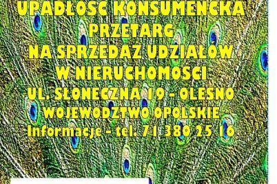 syndyk-sprzeda-udzialy-w-nieruchomo0sci-ardobiejewska.pl-olesno-woj.-opolskier.jpg