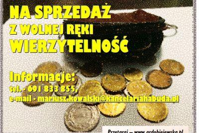 syndyk-sprzeda-wierzytelnosc-ardobiejewska.pl-syndyk-panorama-stronie-slaskie.jpg