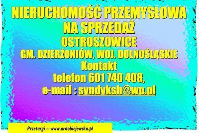 syndysprzeda-ardobiejewska-syndyk-nieruchomosc-przemysłowa-syndyk-ostroszowice-syndyk-drg-agro-group.jpg