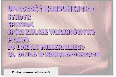 synyk-sprzeda-ardobiejewska.pl-ayndyk-sprzeda-mieszkanie-w-kondratowicach.jpg