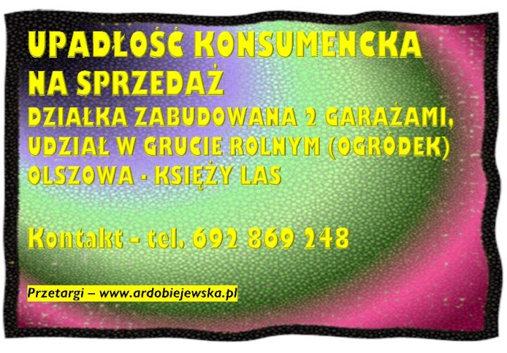 upadlosc-konsumencka-syndyk-sprzeda-garaze-ardobiejewska.pl-na-sprzedaz-zabudowana-dzialka-olszowa-ksiezy-las-nieruchomosci.jpg