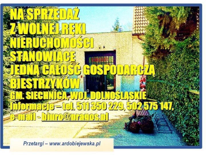 zarzadca-sprzeda-nieruchomosc-przemyslowa-1-ardobiejewska.pl-zarzadca-sprzeda-nieruchomosci-zabudowane-biestrzykow.jpg